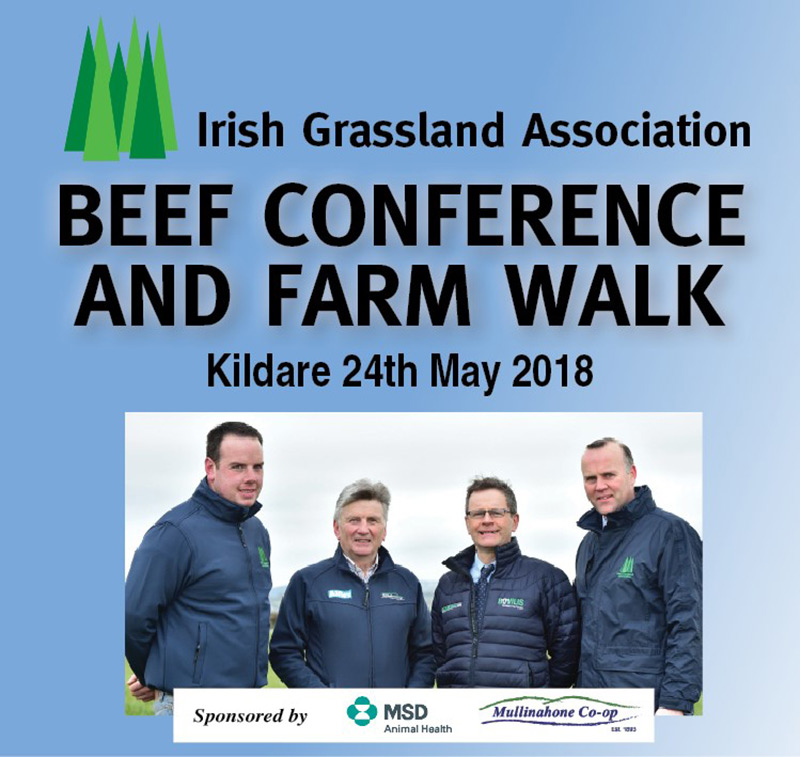 Beef Conf & Farm Walk Review 2018