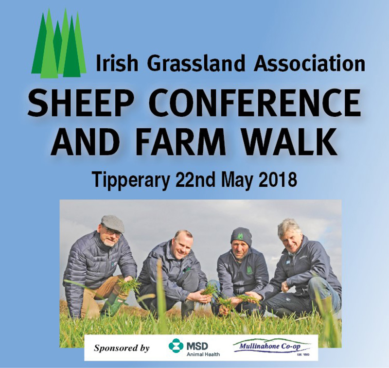 Sheep Conf & Farm Walk Review 2018