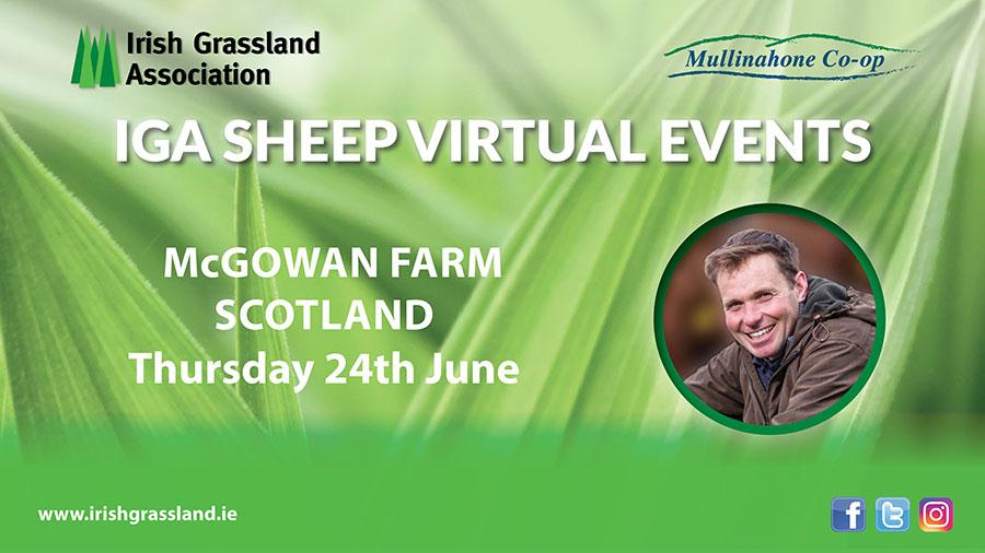 McGowan Farm